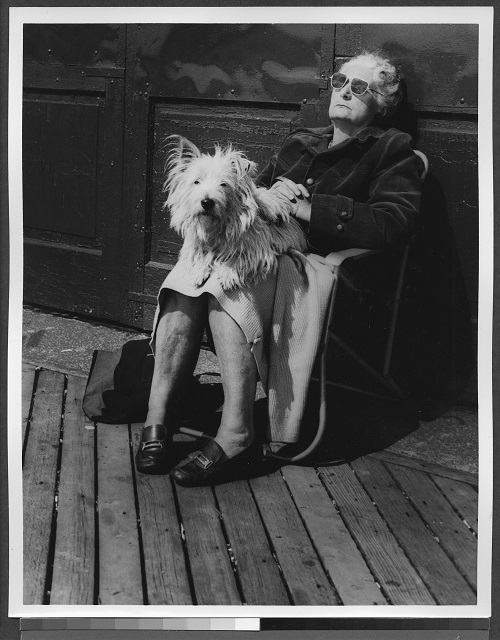 Herzberg, Irving I. Elderly Woman Sitting on Boardwalk with Dog. 1974. The Brooklyn Collection, Brooklyn Public Library.