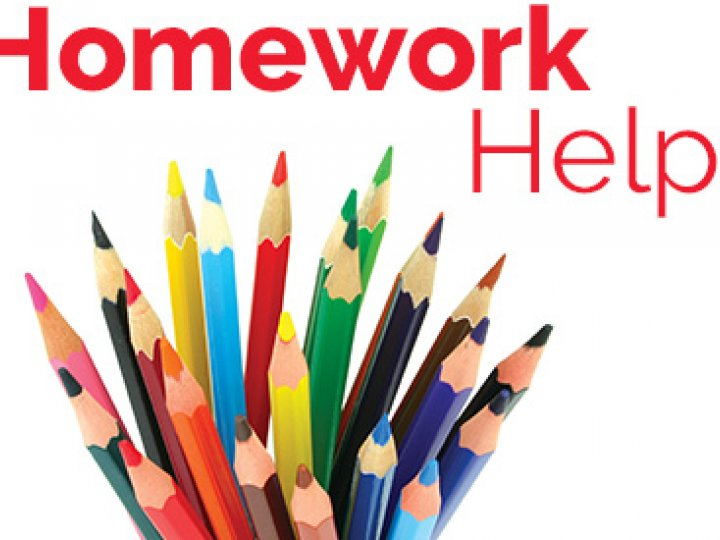 After school homework help jobs