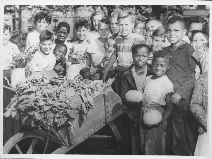 School children in Fort Greene Park, 1953