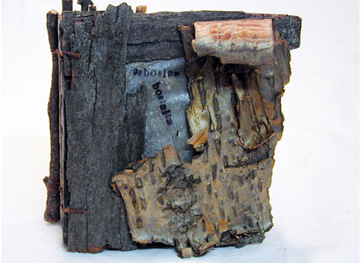 The Book as Process by Lynne Buschman, BPL Exhibition
