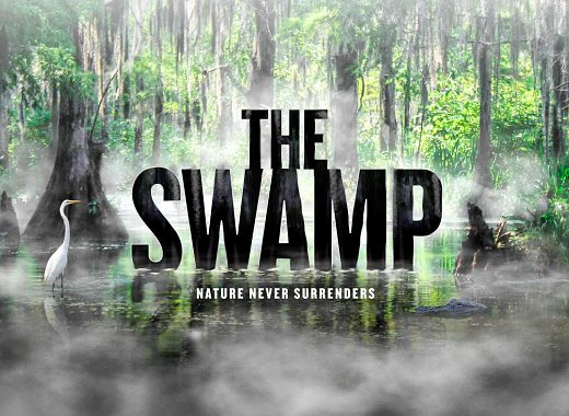 """The Swamp: Nature Never Surrenders"" Talkback with Director Randall MacLowry"