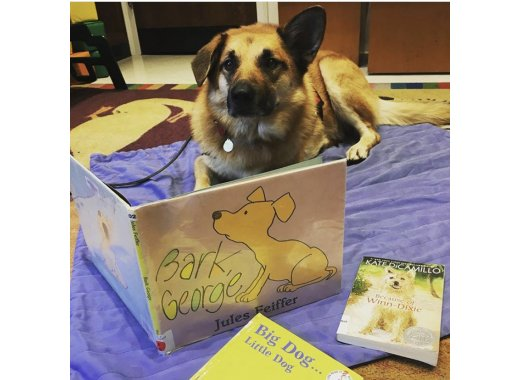 Read With A Therapy Dog