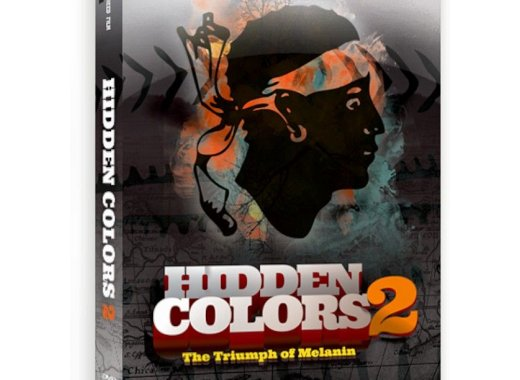Black History Month Movie: Hidden Colors 2