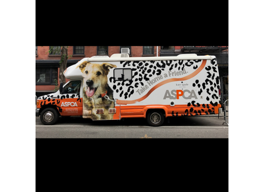ASPCA Adoption Mobile - TAKE HOME A FRIEND