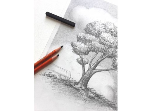 Creative Aging: Drawing Techniques with Charcoal