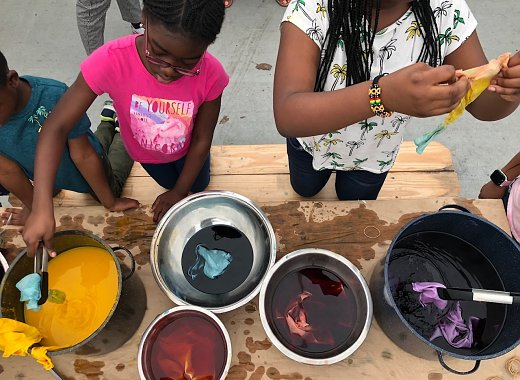 Natural Dyeing with the Wyckoff House Museum