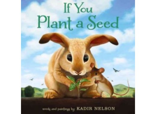Book Adventures : If you plant a seed