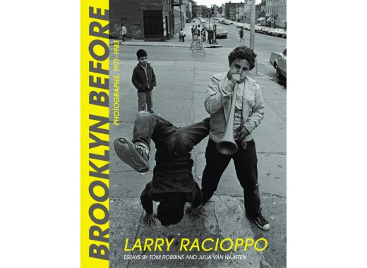 Exhibition and Author Talk-Larry Racioppo