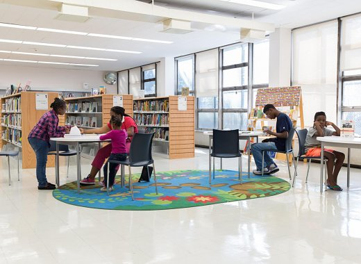 Help Redesign the New NEW LOTS LIBRARY!