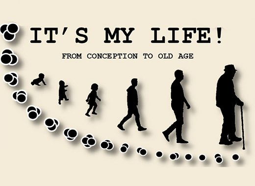 Science in the News: It's my Life: from conception to old age