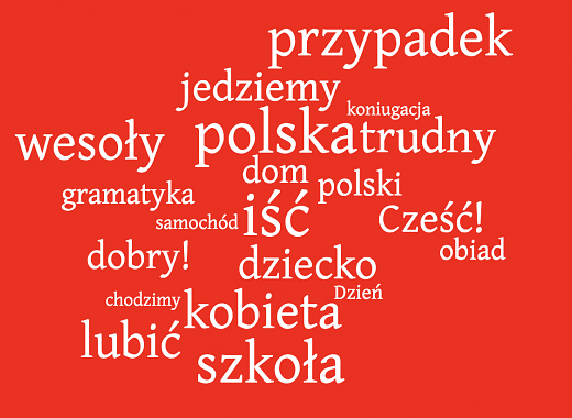 Polish for Beginners 3.0