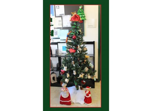 Friends Group of Sheepshead Bay Library X-mas tree raffle