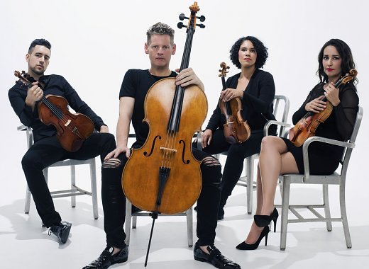 Classical Interludes: Carnegie Hall Citywide: Catalyst Quartet