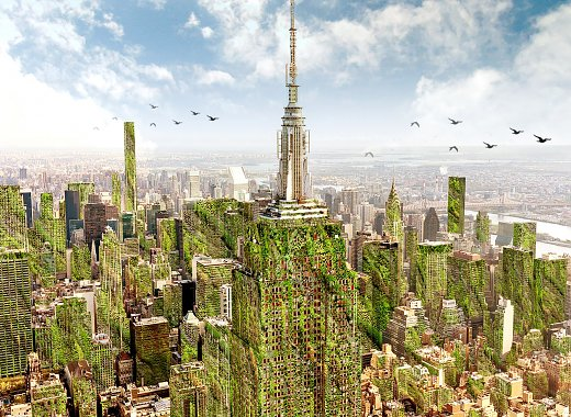 Green Series: Gennaro Brooks-Church on NYC Eco Design