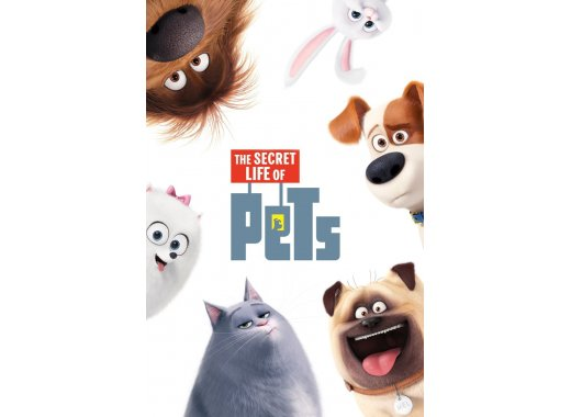 Family Movie: The Secret Life of Pets