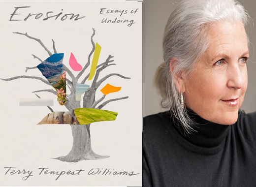 Terry Tempest Williams on Erosion: Essays of Undoing