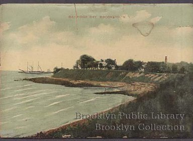 postcard, brooklyn collection
